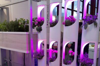 Ponics, la startup dei sistemi acquaponici integrati in filiera ricerca investitori